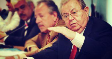 Adrian Voinea, George Constantin Paunescu