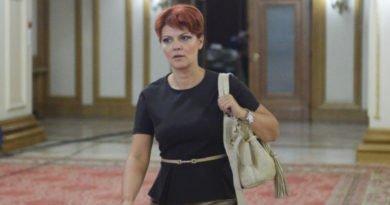 Olguta Vasilescu consilier infrastructura in guvern