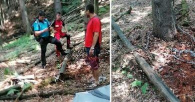 Hunedoara PArang legat cu lanturi de copac