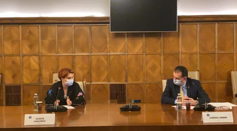 Olguta Vasilescu si Ludovic Orban